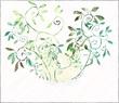 球体に群がるツタ植物たち