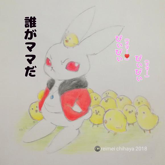 シロウサギ 文字入り版