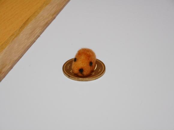 巨大ネズミと五百円玉