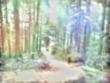 「魔法少女になれたなら」の挿絵