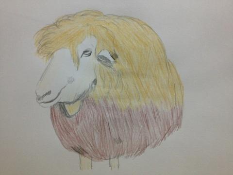 イケメン羊のメーくん。