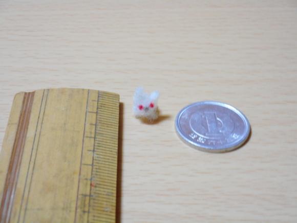 ミニウサギと物差しと一円玉