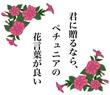 タイトル入② ペチュニア (月野夜様の小説タイトルをお借りして)