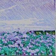 「胡桃の中の蜃気楼」春の墓廟3 挿絵