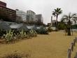 オフ会当日、新宿御苑の大温室外