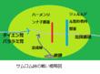千年巫女の代理人 サムロム峠の戦概略図