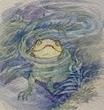 水トカゲが顔を出す