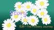 花旅~The Flowery Journey 小説挿絵