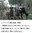 千年巫女の代理人 リファニアの農村(晩夏)