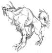 西北西の神チャトラの使い聖犬ヘロ