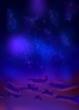 ヤッシ湖の夜空