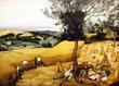 穀物の収穫(The Corn Harvest)1565年