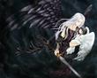 翼ある者-白と黒