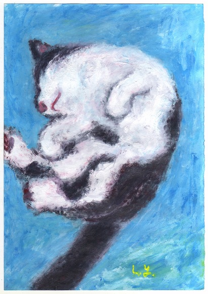 金野さんとこの猫ちゃん